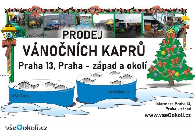 Prodej kaprů na Praha 5 a Praha - západ.